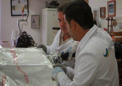 islab control de plagas en huelva 003